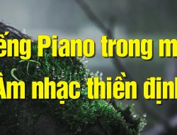 Âm nhạc thiền định – Thư giãn cực sâu – ngủ ngon với piano trong mưa